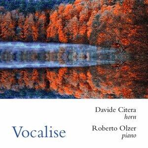 Davide Citera, Roberto Olzer Foto artis