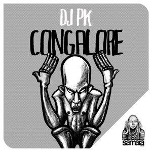 DJ PK Foto artis