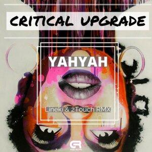 Critical Upgrade Foto artis