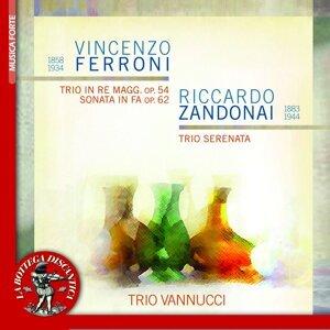 Trio Vannucci Foto artis