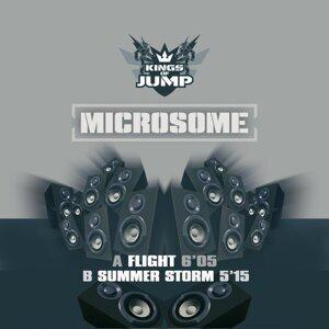Microsome Foto artis