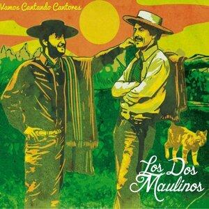 Los Dos Maulinos Foto artis