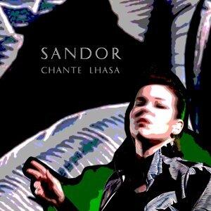 Sandor Foto artis