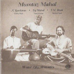 Taj Mahal,N. Ravikiran&V.M. Bhatt 歌手頭像