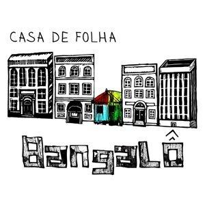 Casa de Folha Foto artis