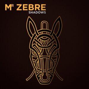 Mr Zebre Foto artis