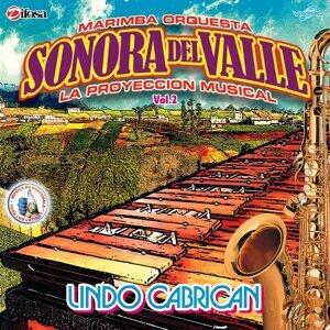 Marimba Orquesta Sonora del Valle Foto artis