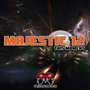 Majestic12 Foto artis