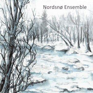 Nordsnø Ensemble Foto artis