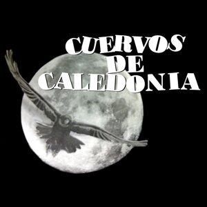 Cuervos de Caledonia Foto artis