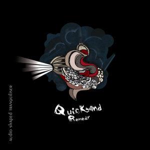 Quicksand Remedy Foto artis