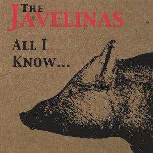 The Javelinas Foto artis