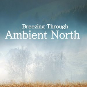 Ambient North 歌手頭像