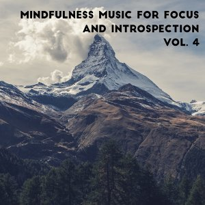 Mindfulness Music for Focus and Introspection Vol. 4 Foto artis