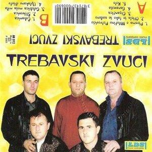 Trebavski Zvuci Foto artis