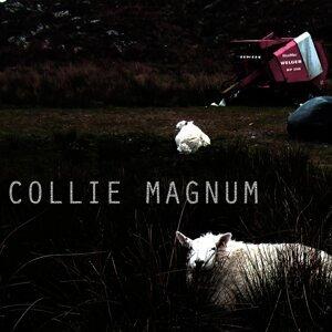 Collie Magnum Foto artis