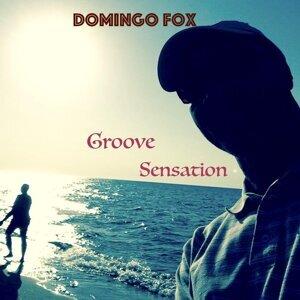 Domingo Fox Foto artis
