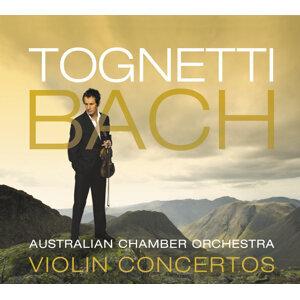 Richard Tognetti, Australian Chamber Orchestra Foto artis