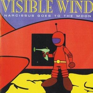 Visible Wind Foto artis