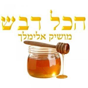 Moshik Elimelech Foto artis