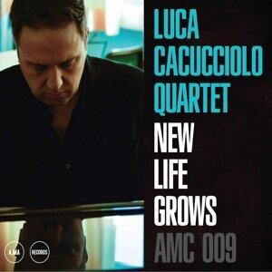 Luca Cacucciolo Foto artis