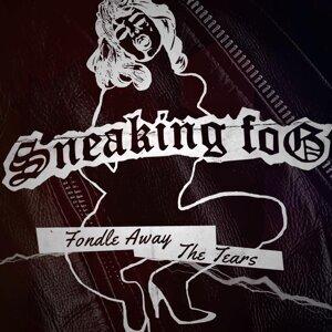 Sneaking Fog Foto artis
