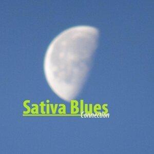 Sativa Blues Foto artis