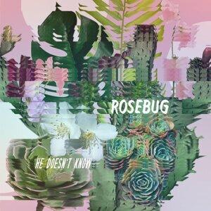Rosebug Foto artis