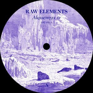 Raw Elements Foto artis