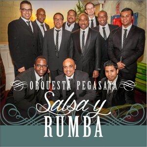 Orquesta Pegasaya Foto artis