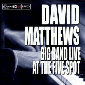 David Matthews 歌手頭像