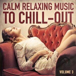 Calming Music Academy, Musica de Relajación Academy, Chillout Lounge Foto artis