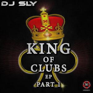 DJ SLY 歌手頭像
