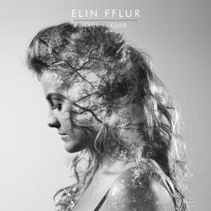 Elin Fflur 歌手頭像