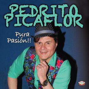 Pedrito Picaflor Foto artis