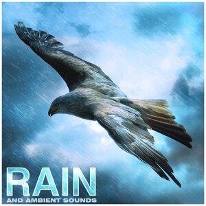 Nature Sounds, Rain Sounds & Nature Sounds Nature Music Foto artis