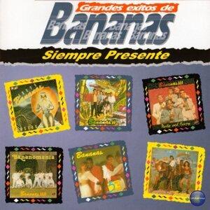 Bananas Foto artis