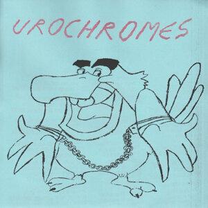 Urochromes Foto artis