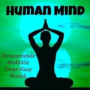 Sleep Music Lullabies & Underwater Sounds Specialists & Healing Massage Music Foto artis