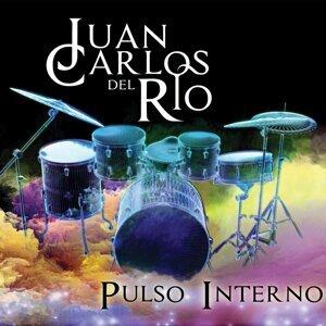 Juan Carlos del Rio Foto artis