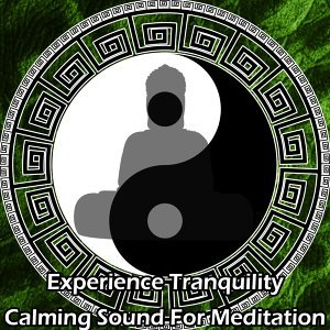 Meditation Music Zone, Mediation Rain Sounds, Meditation Mantras Guru, Lullabies for deep meditation Foto artis