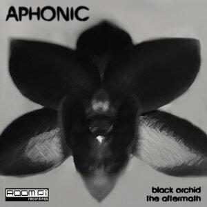 Aphonic 歌手頭像