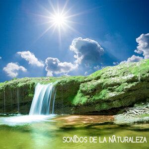 Sonidos de la Naturaleza Relajacion 歌手頭像