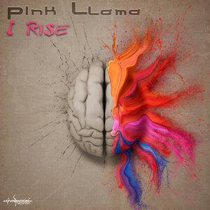 Pink Llama Foto artis