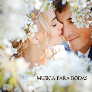 Detalles de Boda Musica Club 歌手頭像