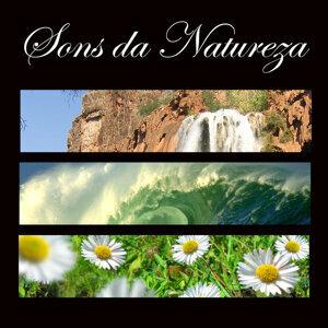 Sons da Natureza & Relaxamento 歌手頭像