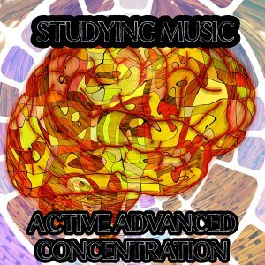 Studying Piano Music, Study Concentration, Focus Study Music Academy, Study Exam Music Foto artis