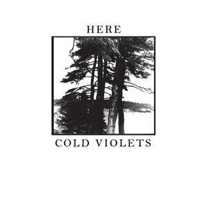 Cold Violets Foto artis