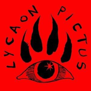 Lycaon Pictus Foto artis