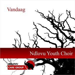 Ndlovu Youth Choir Foto artis